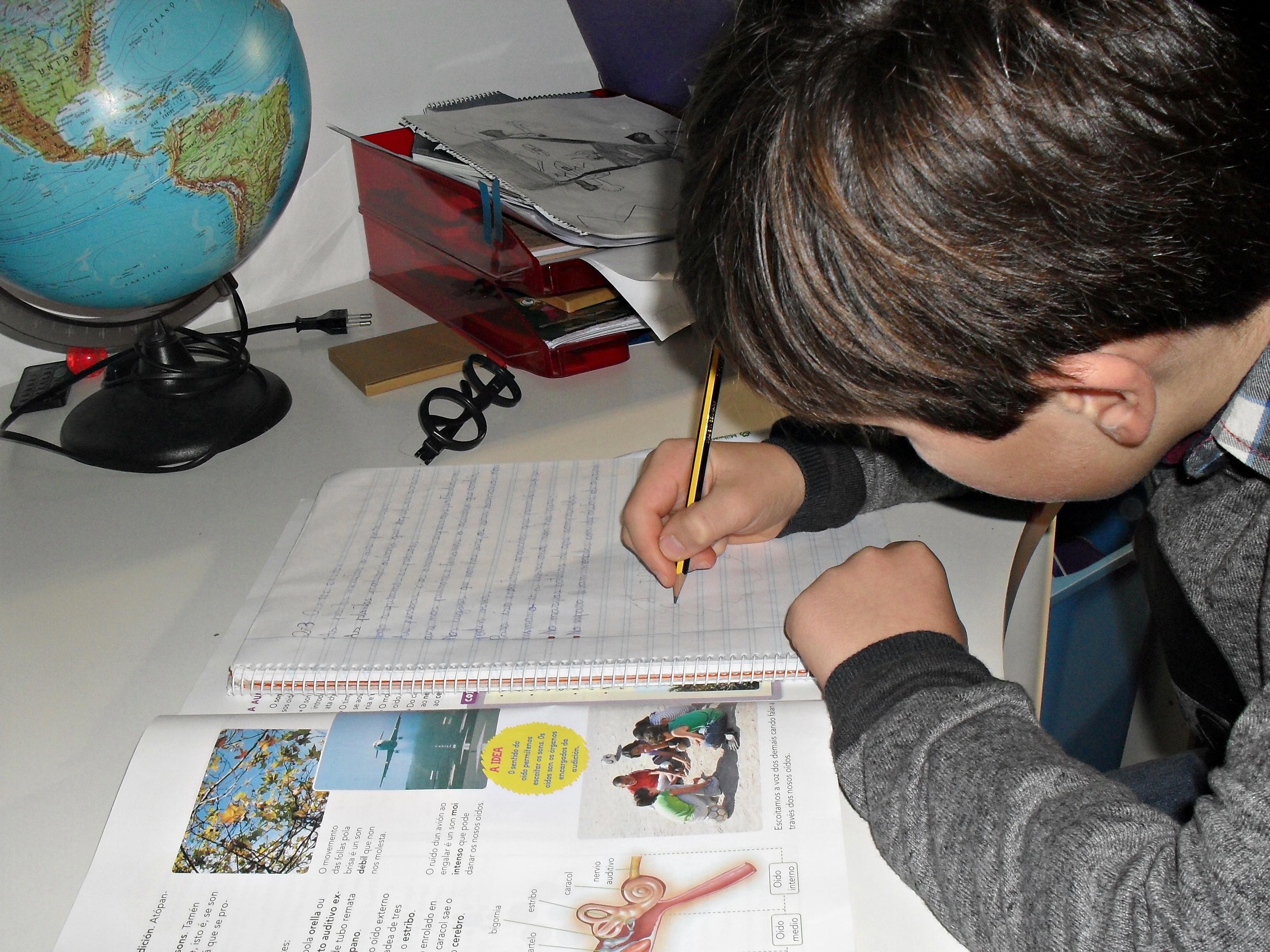 Niño estudiando   Andrea Pérez