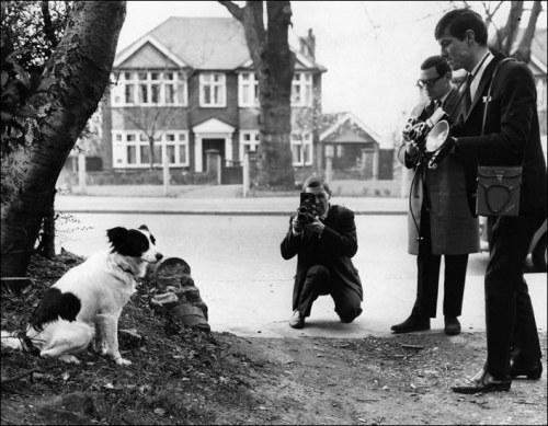 El perro Pickels, fue el gran héroe de esta historia. Años después, se rodaría una película sobre su gesta - ©Cultura Deportiva