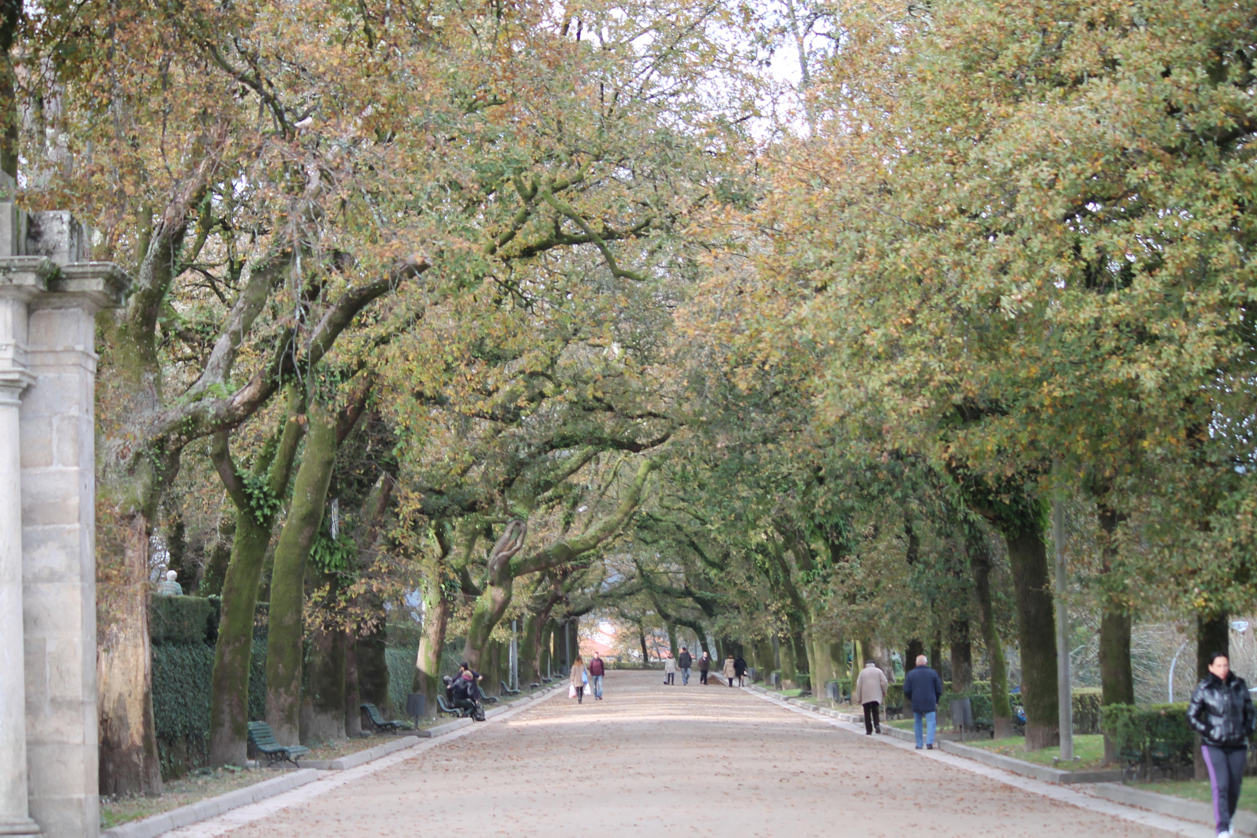 Parque de la Alameda | Aarón Cabado