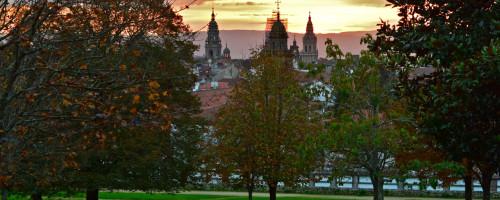 Novembro en Compostela: a danza das follas