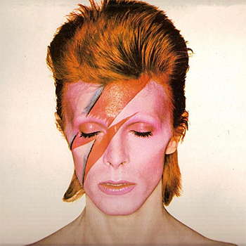 Ziggy Stardust aka David Bowie | http://gingerparrot.co.uk/