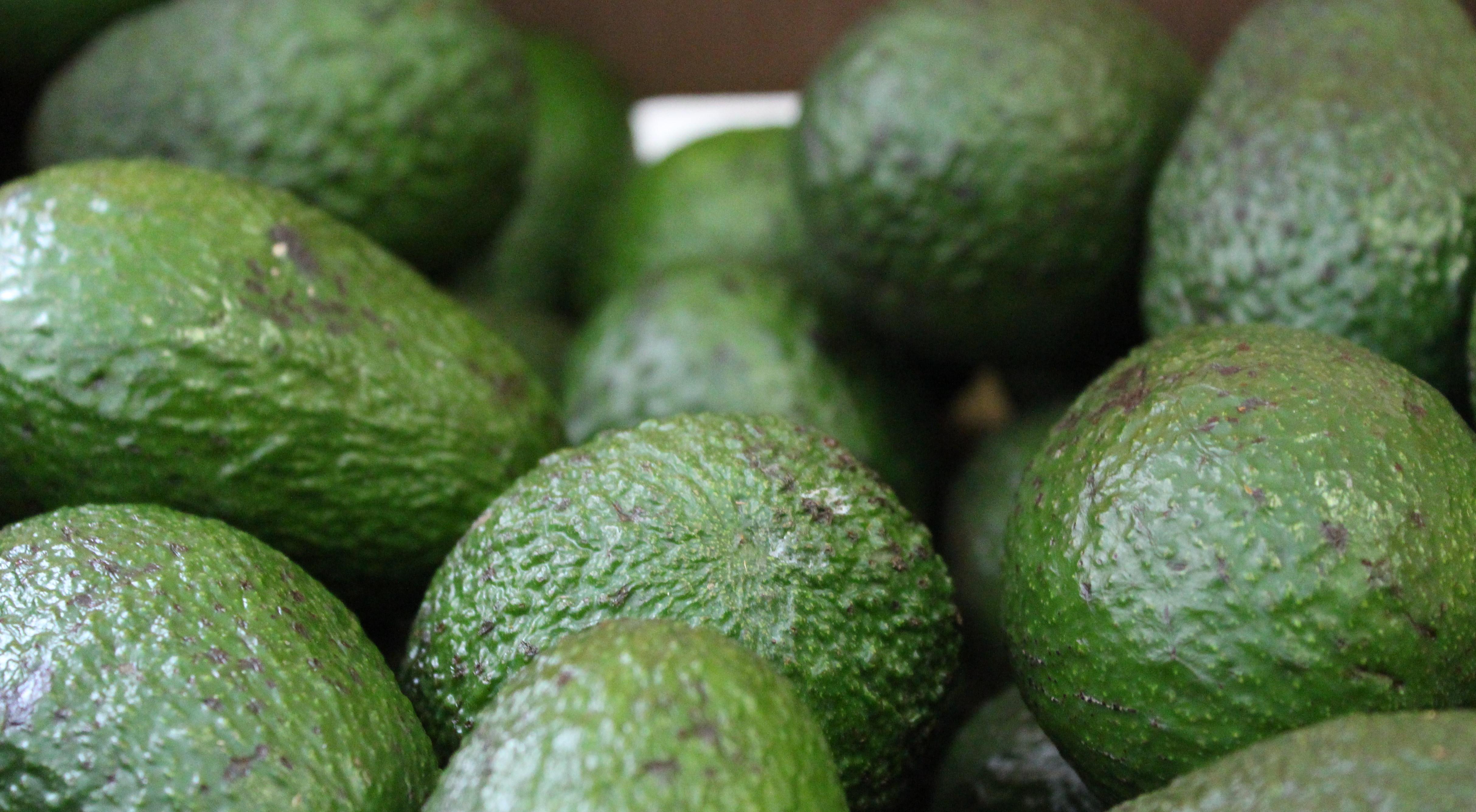 """Los aguacates son considerados """"superalimentos"""" por su aporte en vitaminas y grasas saludables"""
