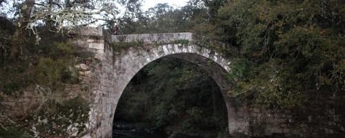 Rutas para disfrutar del otoño gallego