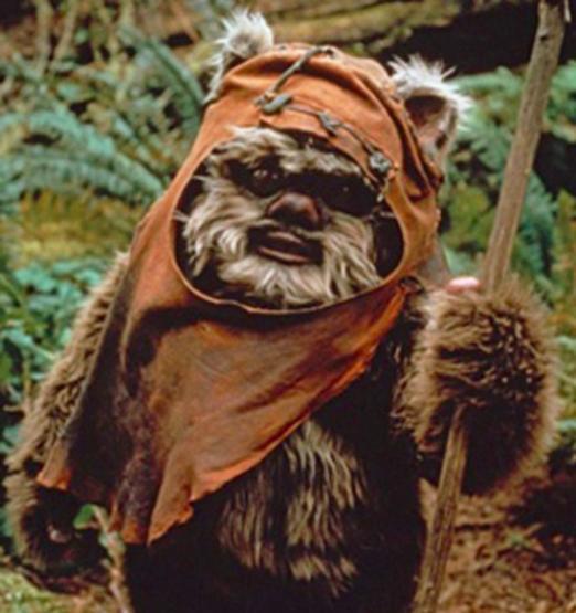 Chámanlle ewok, pero jobubi tampouco quedaría mal.