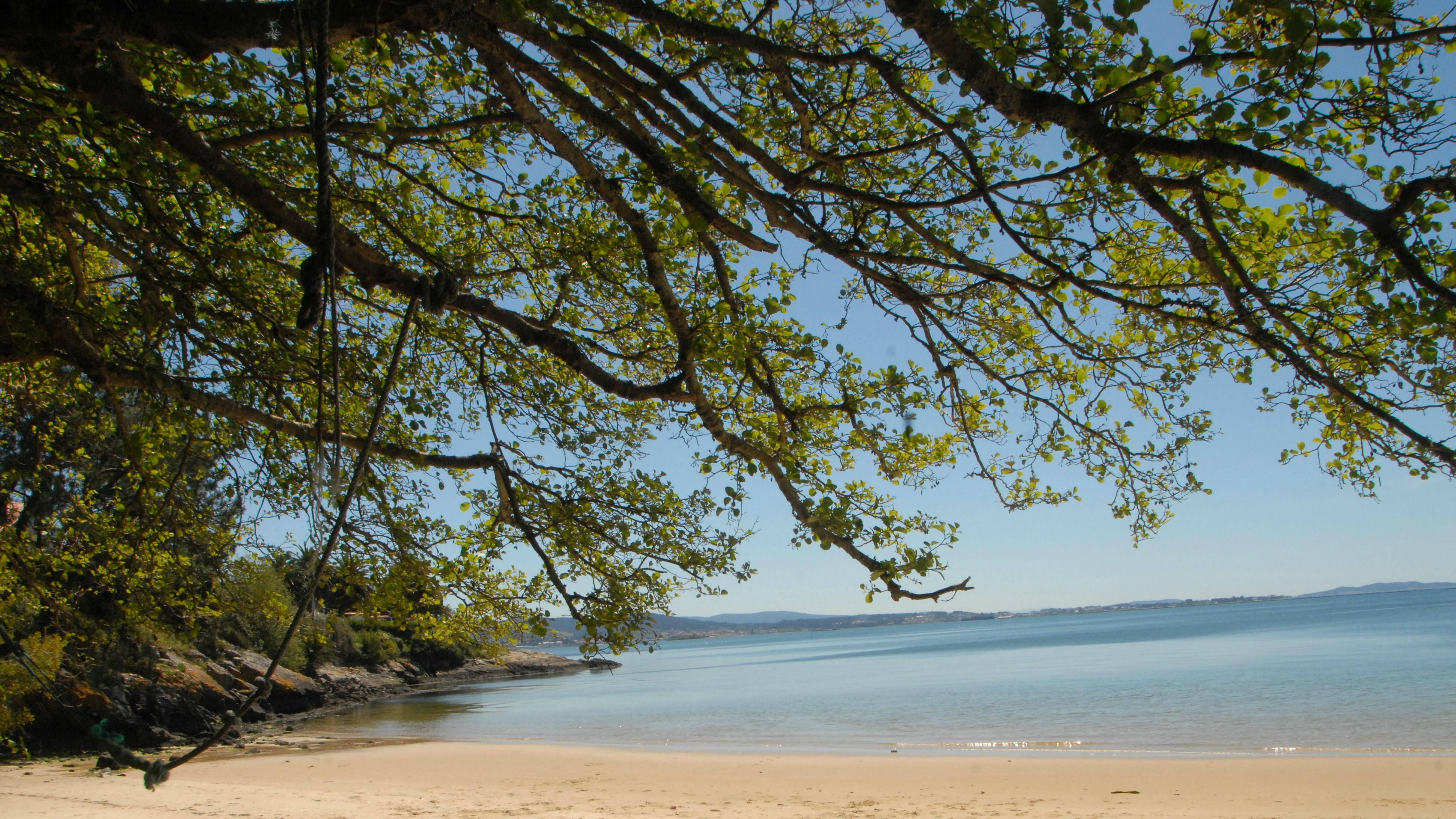 A idílica praia de Tronco, de augas cristalinas e que ofrece intimidade e beleza a partes iguais